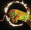 Цирки в Янтиково