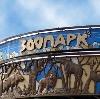 Зоопарки в Янтиково