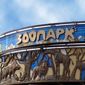 Зоопарки Янтиково